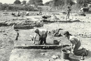 Hardings Excavation